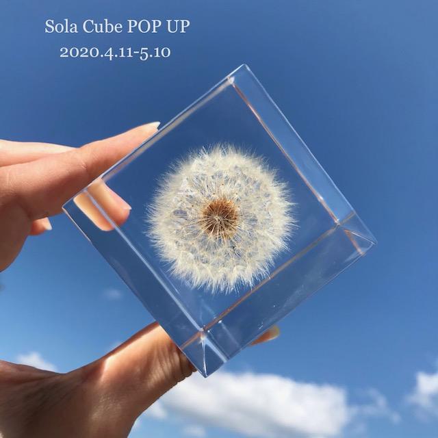 sola cube POP UP開催中